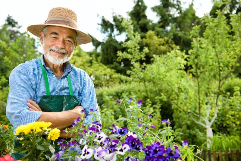 Gartenarbeit des älteren Mannes lizenzfreie stockfotos