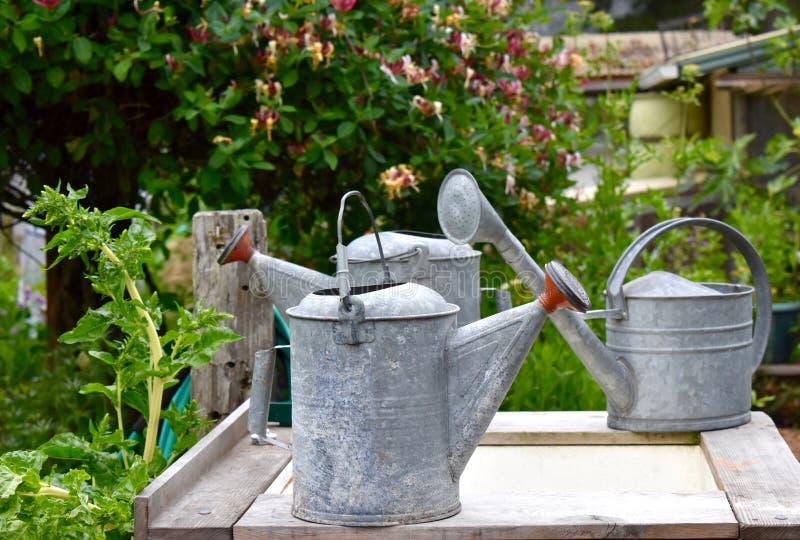 Gartenarbeit - Gießkannen in einem Gemeinschaftsgarten lizenzfreies stockfoto