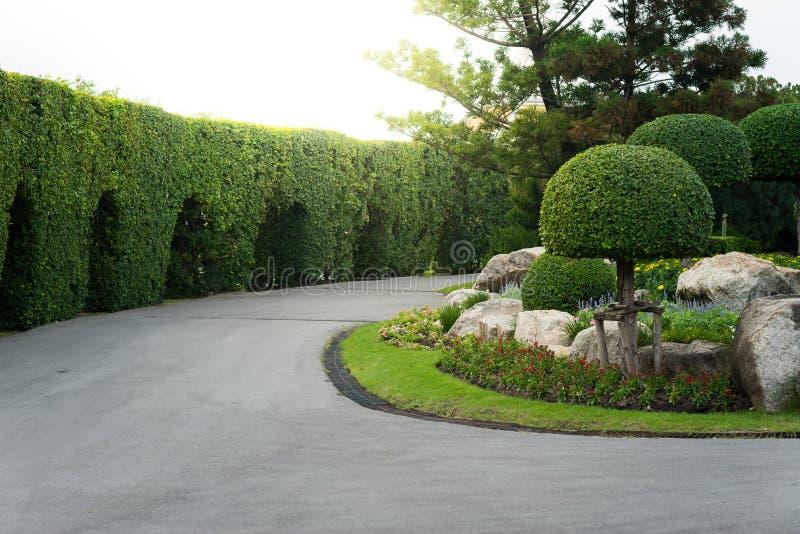 Gartenarbeit und Landschaftsgestaltung mit dekorativen Bäumen lizenzfreie stockbilder