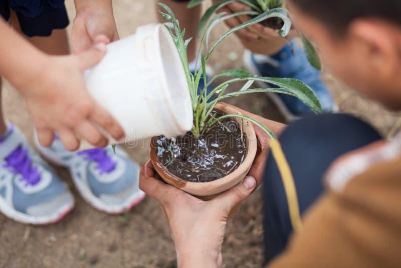 Gartenarbeit und Pflanzen lizenzfreies stockfoto