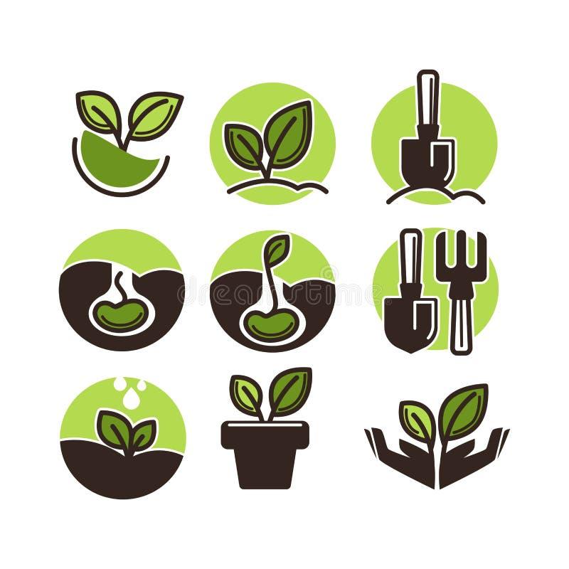 Gartenarbeit und Vektorikonen von Grünpflanzeblumen- und -gärtnerwerkzeugen pflanzend vektor abbildung