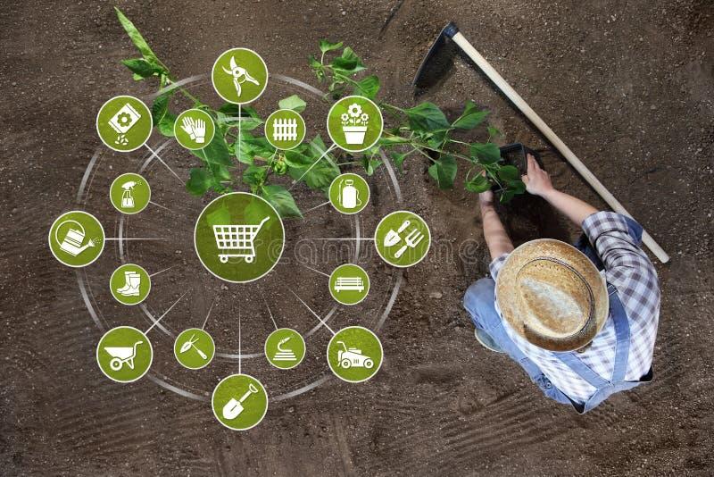 Gartenarbeitausr?stungs-E-Commerce-Konzept, on-line-Einkaufsgartenwerkzeugikonen, Mann, der eine Anlage aus den Grund in der Drau lizenzfreie stockfotografie