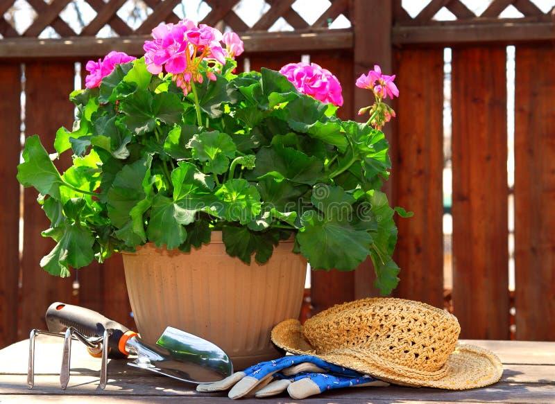Gartenarbeithilfsmittel stockbild