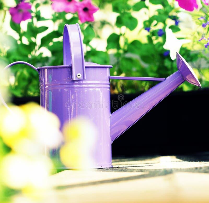 Gartenarbeitkonzepthintergrund Bewässerungsblumen im Balkon stockfotos