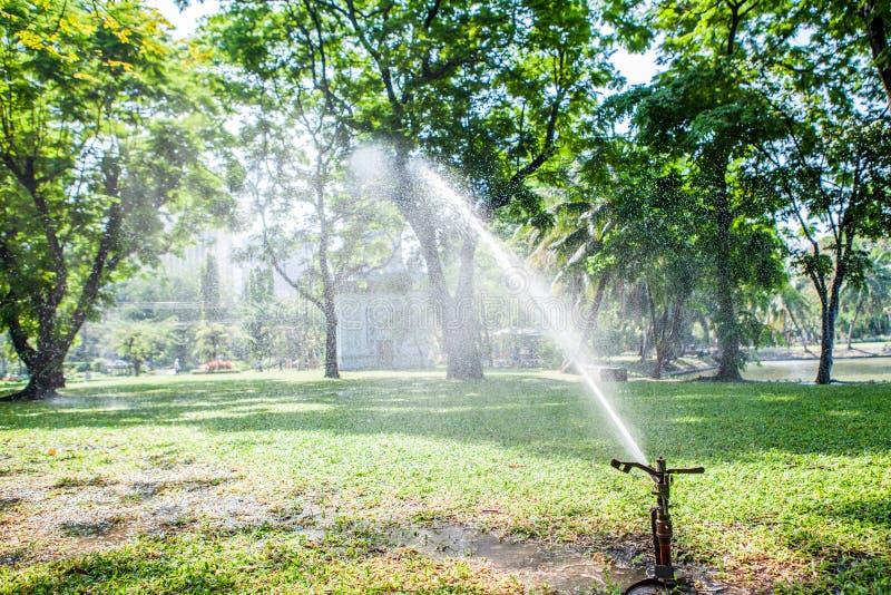 Gartenarbeitrasen berieseln Sprühwasser über grünem Gras in lizenzfreies stockbild