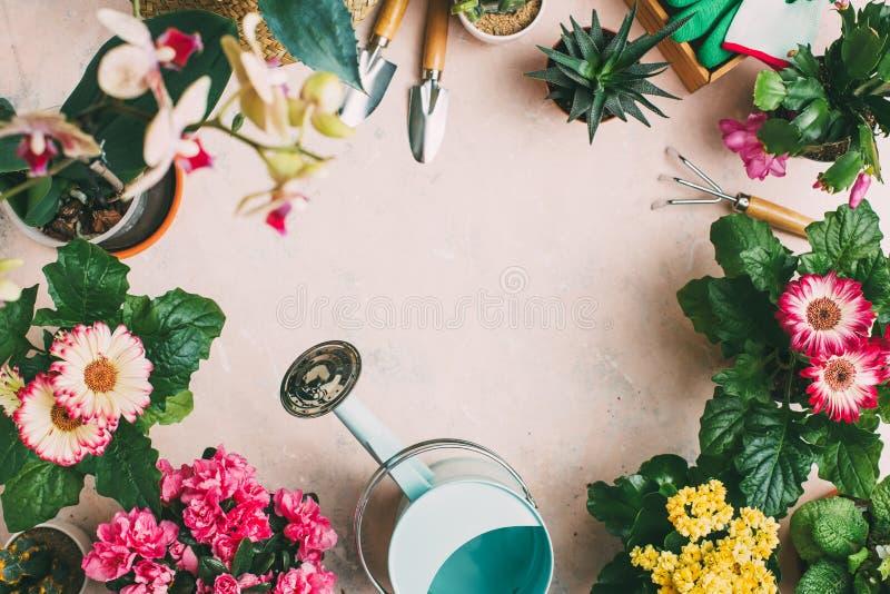 Gartenarbeitwerkzeuge und verschiedene Blumen lizenzfreie stockfotos