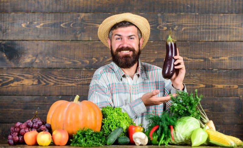 Gartenbau und landwirtschaftliche Systeme schreiben spezifische Techniken vor Konzept des ökologischen Gartenbaus Anbau ökologisc stockbild