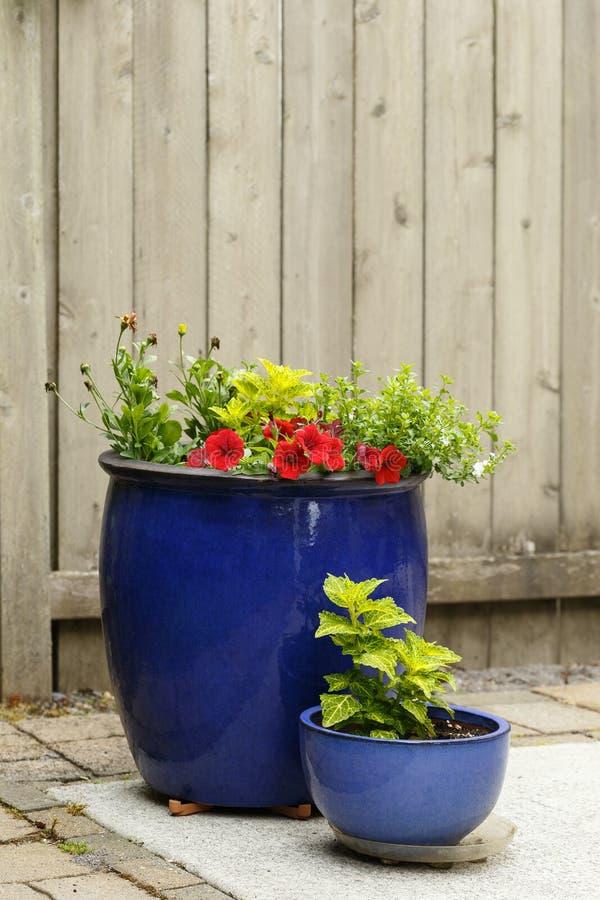 Gartenbehälter, die eine Kombination von Hosen kennzeichnen lizenzfreie stockfotografie