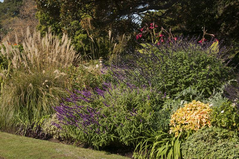 Gartenbetten mit Herbstblüte lizenzfreie stockfotografie
