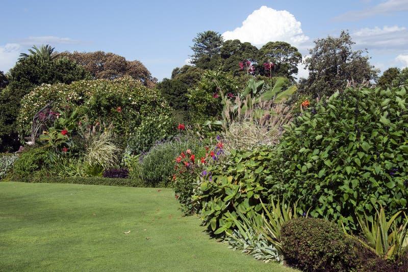 Gartenbetten mit Herbstblüte an einem sonnigen Tag lizenzfreie stockbilder