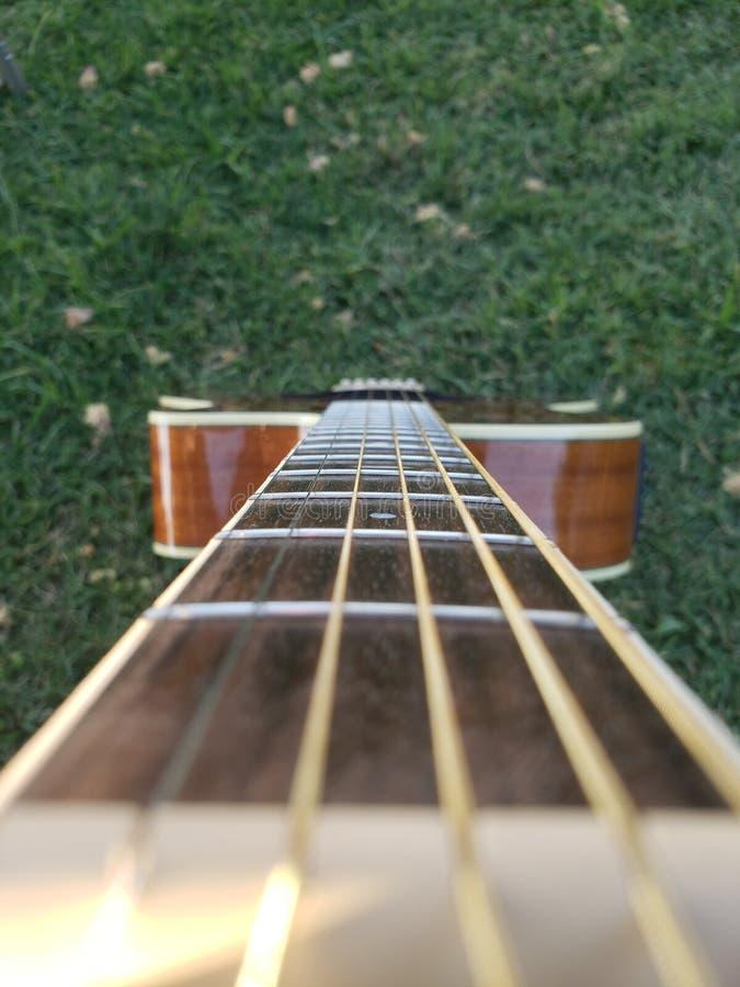 Gartengitarre mit himmlischen Schnüren stockfotografie