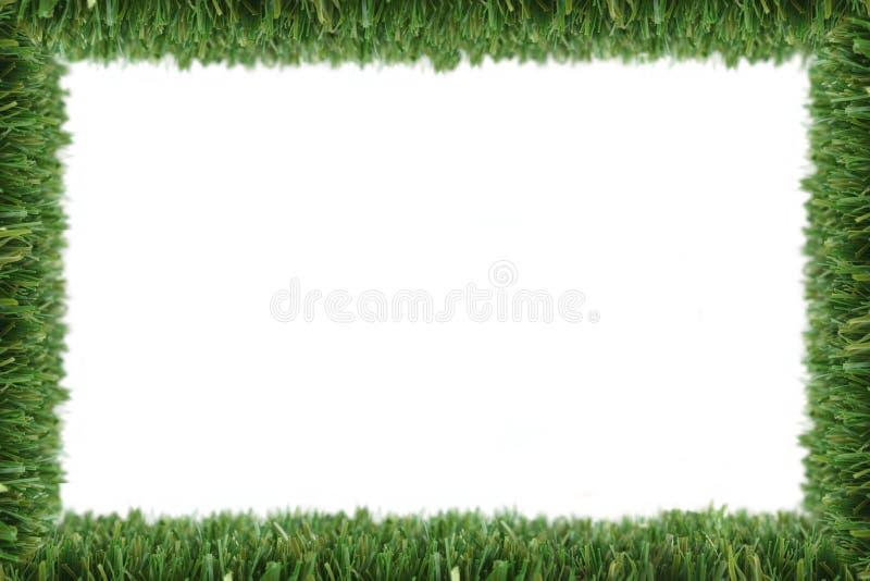 Gartengrasfeld stockfoto