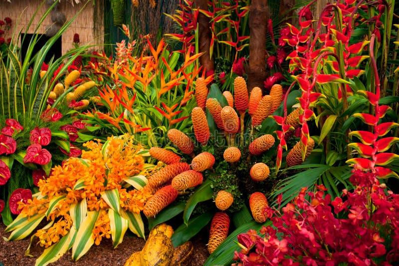 Gartenlandschaft lizenzfreies stockfoto