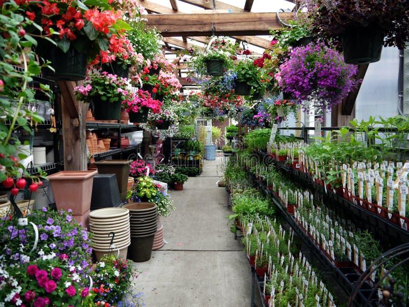 Gartenmitte: Kräuter und hängende Körbe stockbilder