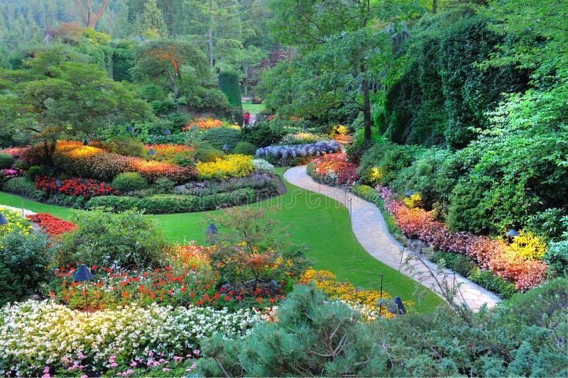 Gartennachtszene lizenzfreies stockfoto