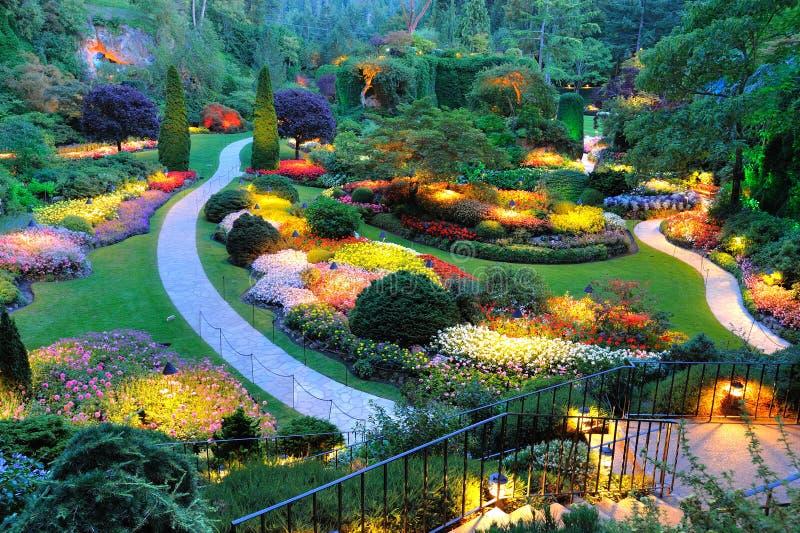 Gartennachtszene stockbilder