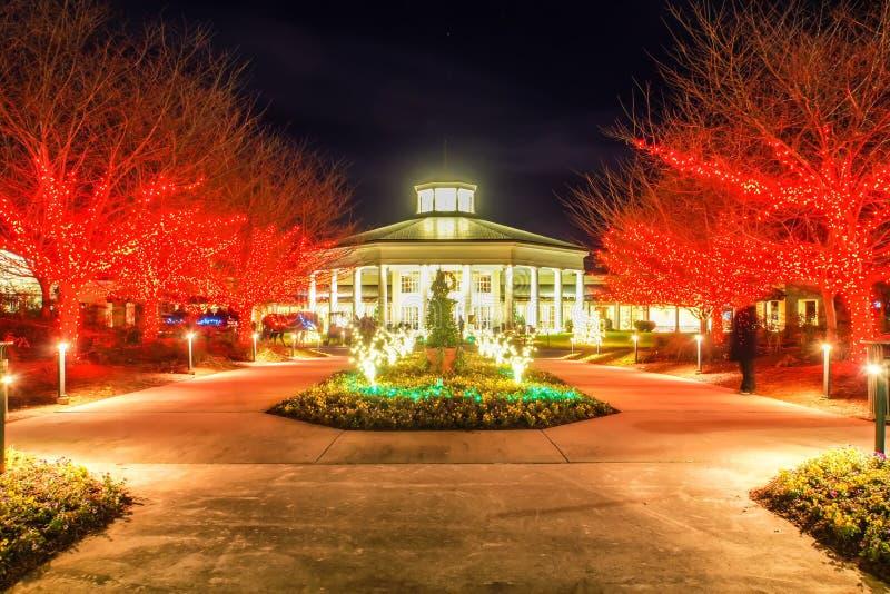 Gartennachtszene zur Weihnachtszeit stockfotos