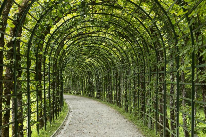Gartenpergola-Tunnelgehweg im Park lizenzfreie stockbilder