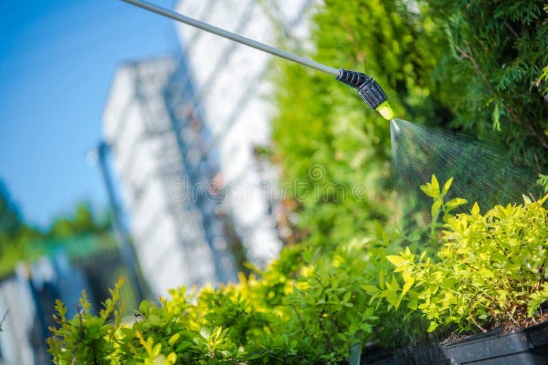Gartenpflanze-Insektenvertilgungsmittel stockbilder