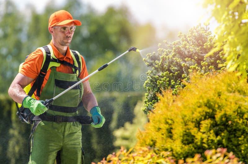 Gartenpflanze-Insektenvertilgungsmittel stockbild