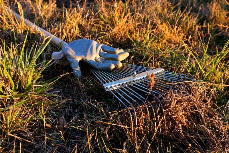 Gartenrührstangen und -handschuhe stockfotos