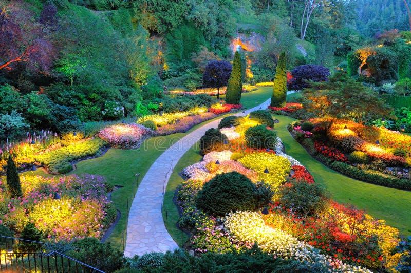 Gartensommernacht lizenzfreies stockfoto