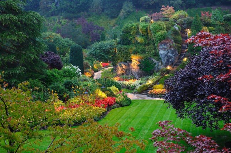 Gartensommernacht stockfotos