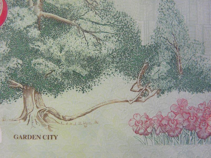 Gartenstadtporträt auf 5 Dollar Singapur-Banknote stock abbildung
