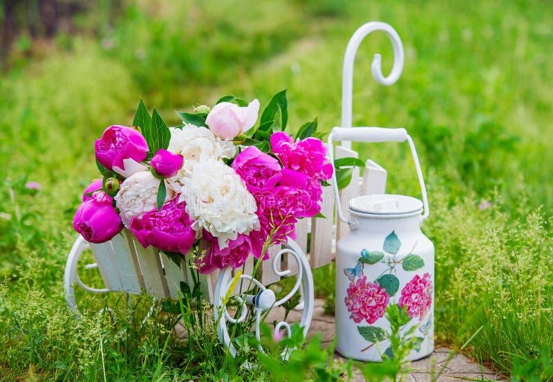 Gartenstillleben mit empfindlichen Pfingstrosen stockfotografie