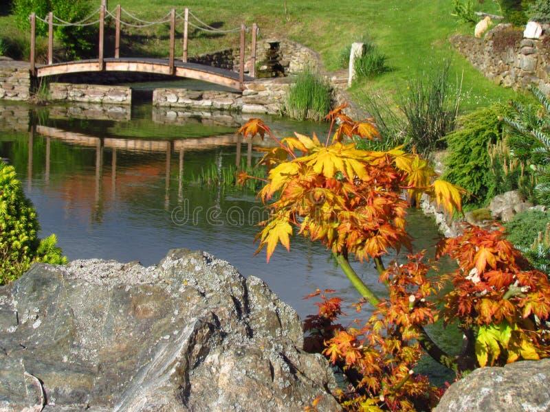 Gartenstillleben mit Wasseroberfläche, Holzbrücke, Steinen und bunten Anlagen Garten in der japanischen Art stockbilder
