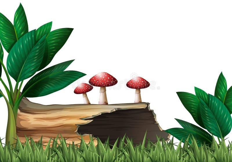 Gartenszene mit Klotz und Pilzen stock abbildung