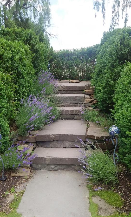 Gartentreppe stockfotos