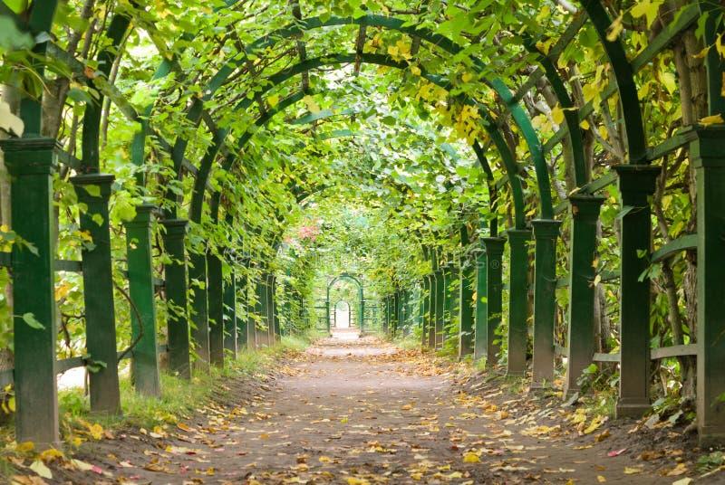 Gartentunnel lizenzfreies stockbild