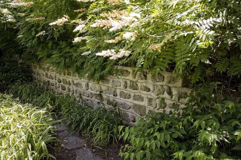 Gartenwand stockbild