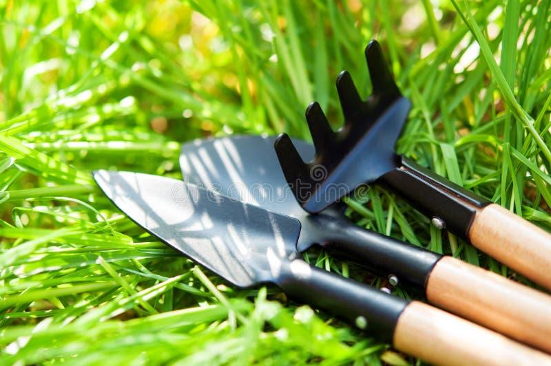 Gartenwerkzeuge lizenzfreies stockbild