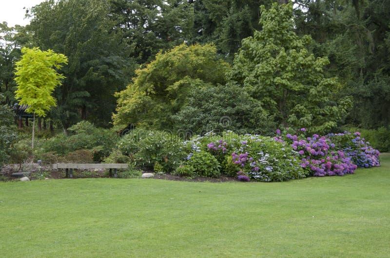 Gartenyarddesign lizenzfreies stockbild