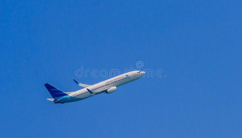 Garuda stock foto