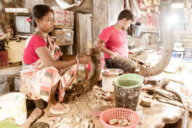 Garulia Fish Market, North 24 Parganas, West Bengal, Índia 1 de maio de 2018 - Aldeias vendendo pescado no mercado de peixe Lady  foto de stock royalty free