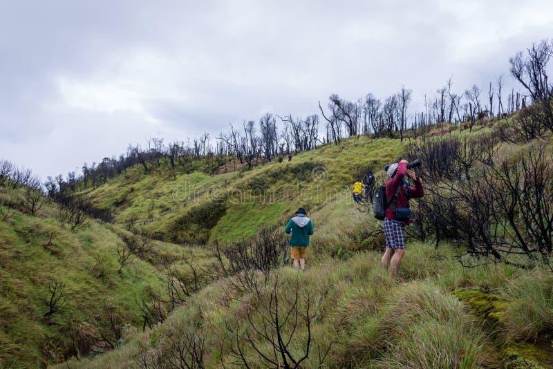 Garut, Indonésia - 12 de agosto de 2018: Um grupo de jovens é de apreciação e de caminhada a montanha de Papandayan A montanha de foto de stock
