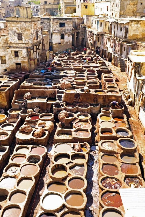 Garvare som arbetar läder i den gamla garveriet av Fes, Marocko arkivfoton