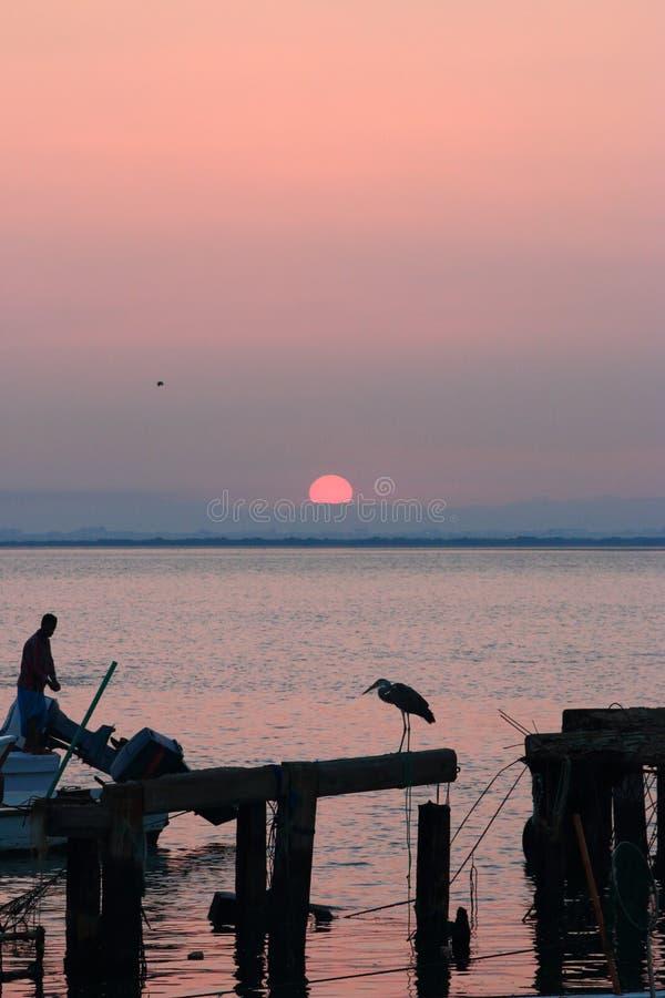 Garza y pescador foto de archivo libre de regalías
