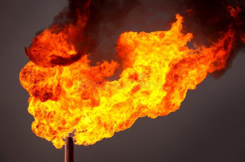 gas facklan royaltyfria bilder