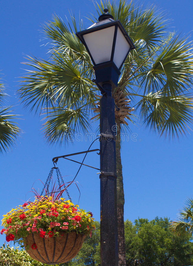 Gas Lamp with Hanging Plant stock images