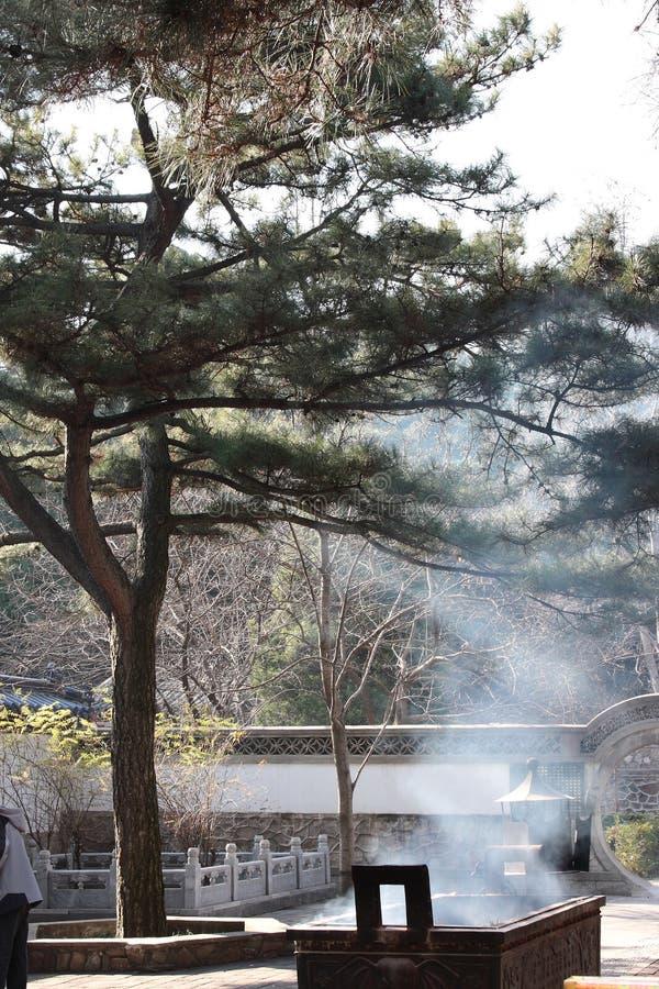 gasbrännarerökelse sörjer royaltyfria bilder