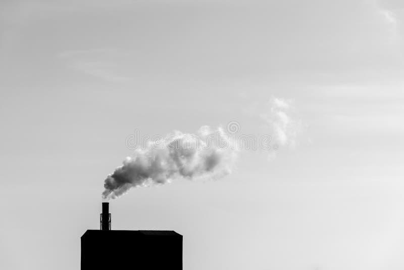 Gase gehen die Natur stockfotos