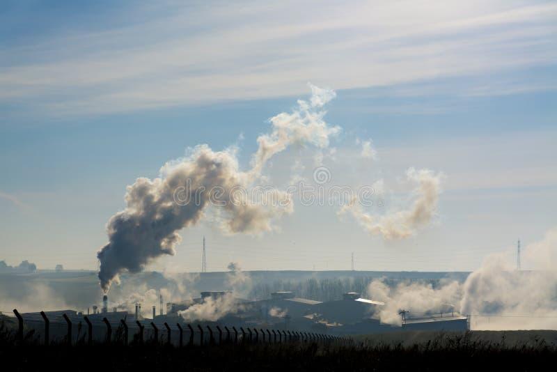 Gaser går naturen arkivfoton