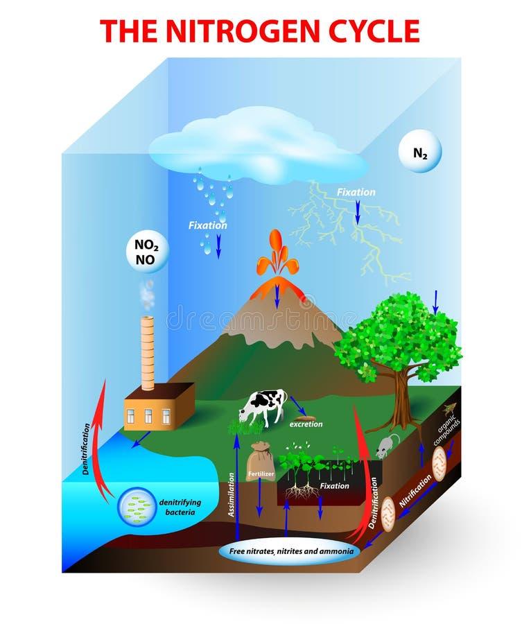 Gasformigt grundämnecirkulering stock illustrationer