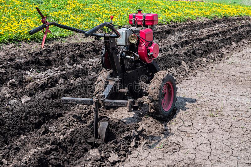 Gasoline cultivator with plow makes furrow in soil for potato plantation stock photos