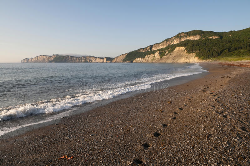 Gaspe Beach. Footprints on the beach at Gaspe Quebec, shoe early in the morning royalty free stock image