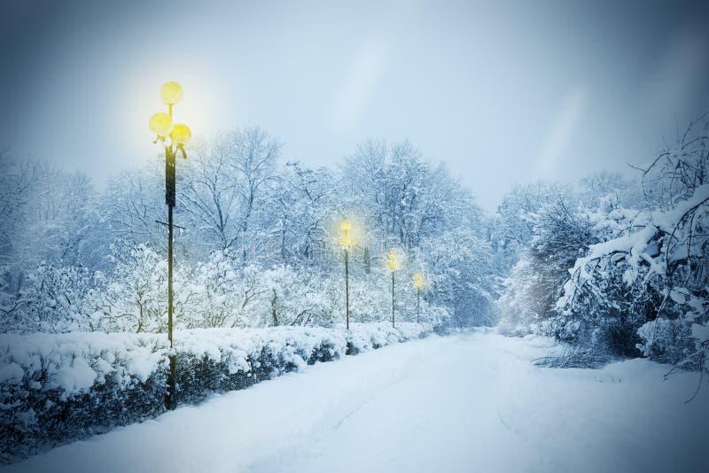 Gasse abgedeckt mit Schnee lizenzfreies stockbild